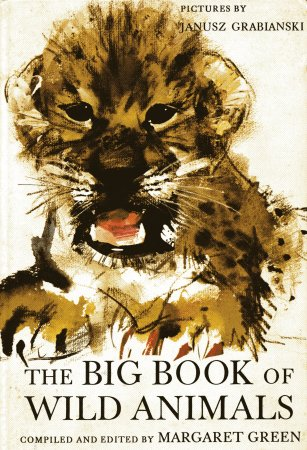 My big picture book of animals