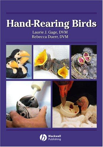Hand-Rearing Birds