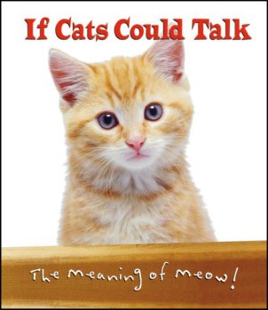 If cat's could talk!