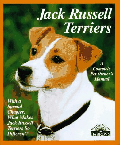 your parson and jack russell terrier morgan diane