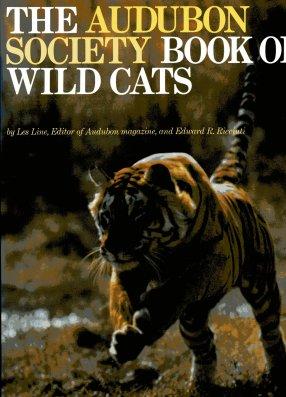 Beware of the cat big book
