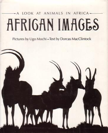 african animals art. African Images: A Look At